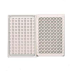 发光板,96孔,可拆,白色,配8孔条,10块/盒,200块/箱