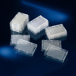 96孔板;带盖;包装1/8;无菌,UpCell表面