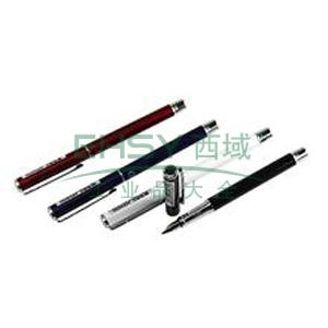 晨光 M&G 钢笔 AFP45701 0.5mm 12支/盒 (黑蓝红白,随机发放)