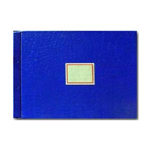 立信 塑料帐册封面2902-A4A(直式)