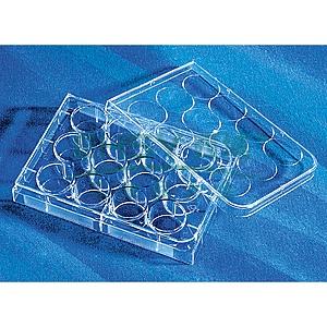 12孔透明标准板,TC表面,灭菌,独立包装,1个/包