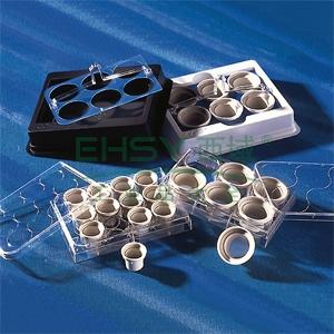 NETWELL试剂盘,白色,独立包装,未灭菌,25个/包