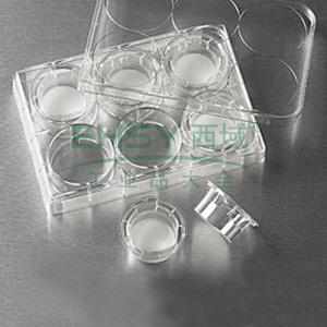 Transwell-膜嵌套,24mm膜,0.4um,PC膜,TC表面,灭菌,6个/包