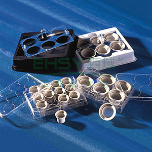 Netwell嵌套(细胞筛网),24mm直径,PS嵌套,500um孔径,PE膜,灭菌,6个/包