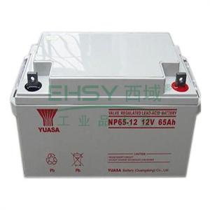 汤浅 蓄电池 标准电压12V 电池容量65Ah,NP65-12