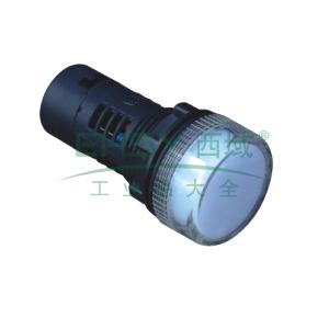 施耐德 XB2 指示灯(24VDC),XB2BVB1LC