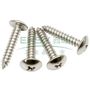 十字槽大扁头自攻螺钉,JIS B 1122,ST2.2*22,不锈钢A2/SUS304,200个/包