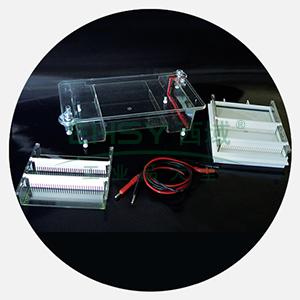 DYCP-31E型琼脂糖水平电泳仪(中号),六一
