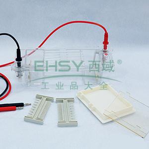 DYCP-31CN型琼脂糖水平电泳仪(小号),六一