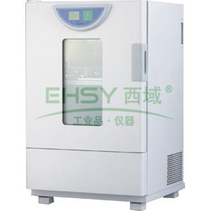 老化试验箱,一恒,BHO-401A,控温范围:RT+20-250℃,工作室尺寸:450x450x450mm