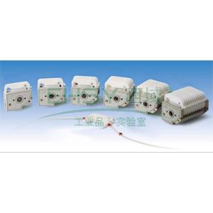 泵头,兰格,小流量多通道型,Dg-1,最大参考流量48ml/min(单通道),滚轮数量:6,通道数量:1