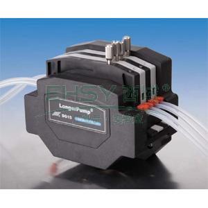 泵头,兰格,中流量多通道型,Dg15-24,最大参考流量:1800ml/min,滚轮数量:4,通道数量:2