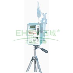 多功能大气采样器,流量:0.1至3L/min,进口真空泵 ZGQ-15D/A