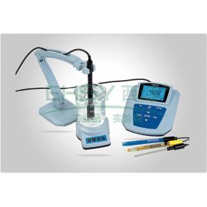 pH仪/溶解氧仪,MP525