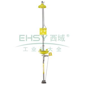 SYSBEL 洗眼器,复合式洗眼器,AES花洒罩,AES水盆,脚踏装置,WG7053FY