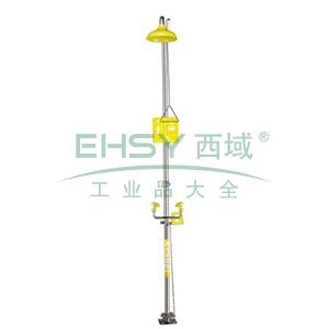 西斯贝尔 复合式安全洗眼和冲淋器无盆式,WG7050FY