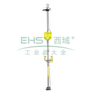 西斯贝尔 复合式安全洗眼和冲淋器无盆式,WG7050F