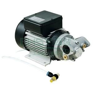 fuel works  17320090 交流电动机油润滑油输送泵