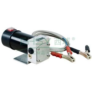 fuel works  17520100 直流电动机油润滑油输送泵