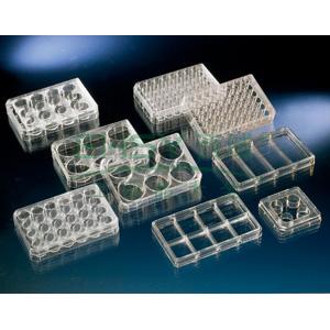 Nunc多孔细胞培养板,聚苯乙烯,带盖,Nunclon△,孔数,12,建议工作容量,3ml/孔,每包/箱数1/75