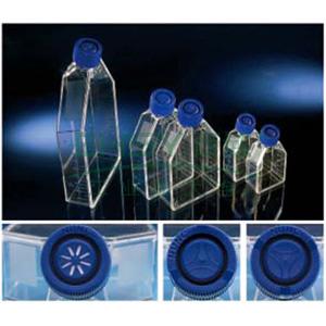 EasyFlasksTMNunclonTM△易用培养瓶,聚苯乙烯,已灭菌,培养面积75cm2,瓶盖,过滤