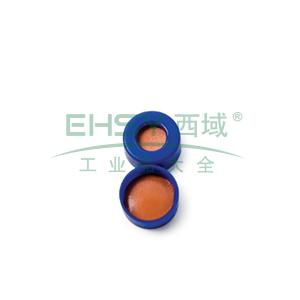 蓝色 SNAP-IT 密封垫  聚四氟乙烯/红色橡胶
