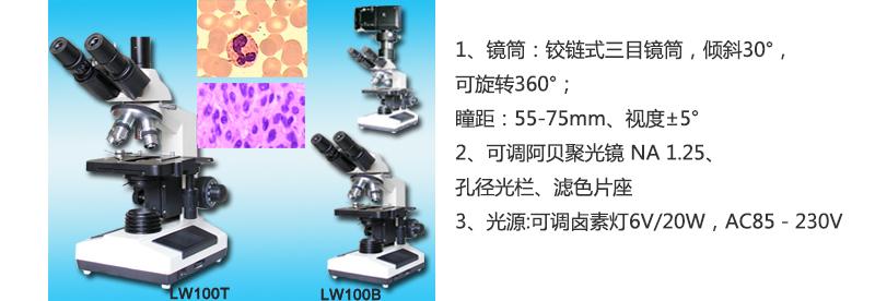 LAA665-1.jpg