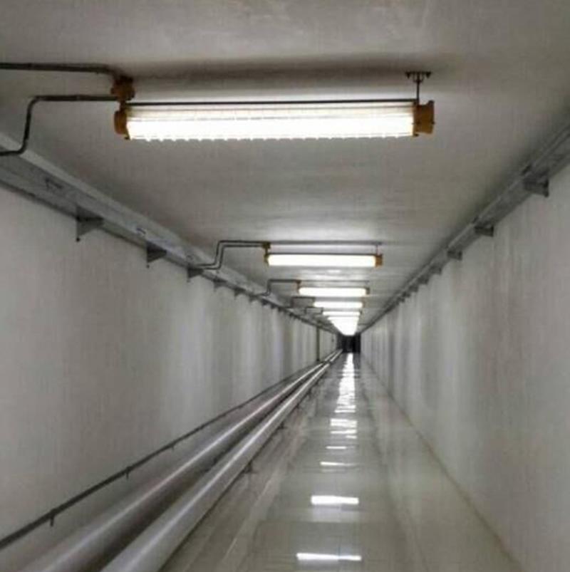 正辉防爆led灯双管bcx6228-l含led灯管