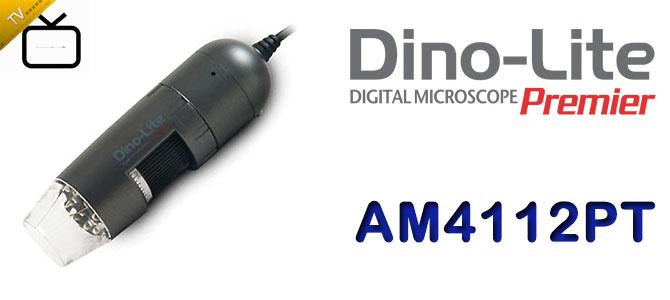 AMV826.jpg