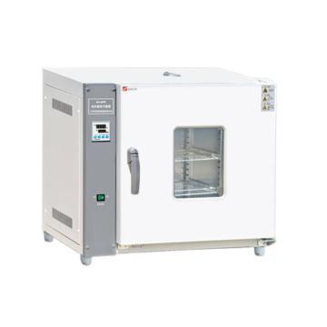 电热恒温干燥箱,泰斯特,卧式202-0A