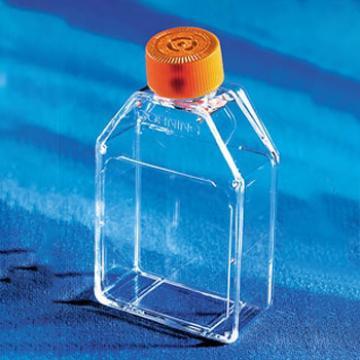 培养瓶,25cm²,透气盖,CellBIND表面,灭菌,20个/包