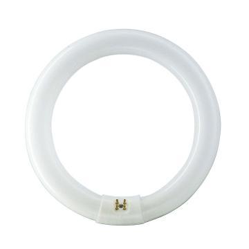 飞利浦 22W T8普通环形荧光灯管,TLE 22W/54 765 白光 (T8)
