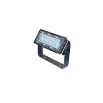 深圳海洋王 NTC9280-110W LED投光灯, 110W 冷白