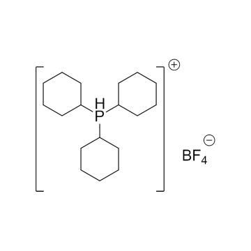 CAS:58656-04-5|三环己基膦氟硼酸盐|98%|600367-25g