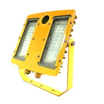海洋王 BFC8118-100W  LED防爆摄像泛光灯 模拟