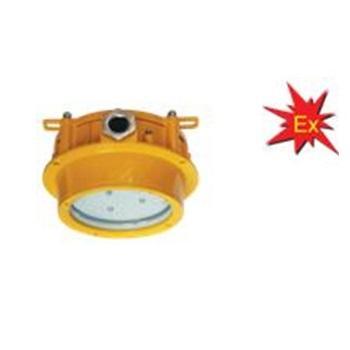 海洋王 BPC8762 LED防爆平台灯 15W 吸顶式