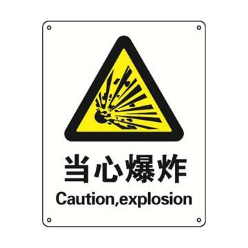 安赛瑞 国标标识 当心爆炸,ABS板,250×315mm,30824