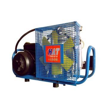 海安特 空气呼吸器充气泵,电力单相发动机,2.2kW,HL110E1