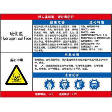 职业病危害告知卡(硫化氢)-ABS板,600×450mm,14603