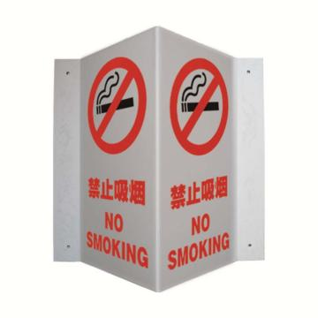 V型标识(禁止吸烟)  ABS板,单面150×300mm,中英文    39049