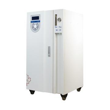 RO系列,纯水系统,力康,RO2-50