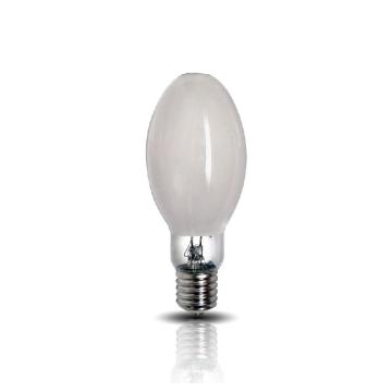 亚牌-GYZ250. ED(90).E40 自镇流汞灯,单位:个