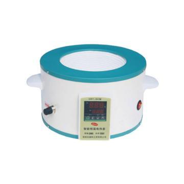 电热套,DRT-SX,数显型,温度范围:RT-300℃,容量:1000ml