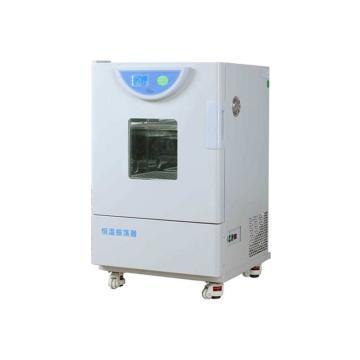一恒 恒温振荡器-液晶屏,THZ-98C(双层)