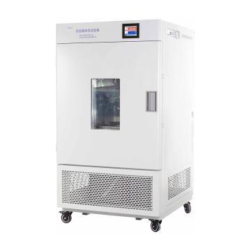 一恒 综合药品稳定性试验箱,强光,范围:无光照:0~65℃;有光照:10~50℃,可程式液晶控制器,500L,LHH-500GSD