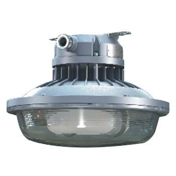 森本 FGV6108-QL65免维护节能防水防尘防腐灯,吸顶式安装,65W,白光
