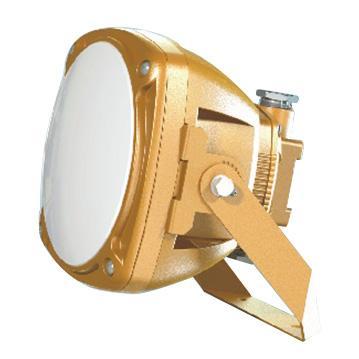 森本 FGV1246-LED20,防爆LED光源灯,20W,白光,单位:个