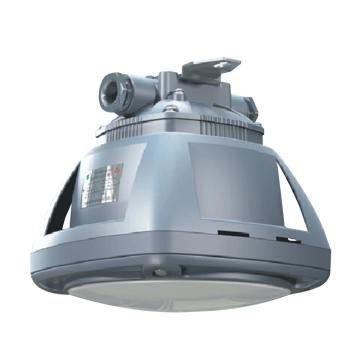 森本 防爆LED光源灯,白光 20W,FGV1206-LED20,单位:个