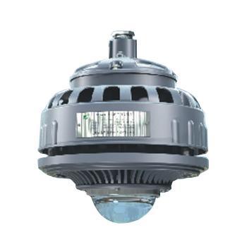 森本 LED免维护节能防水防尘防腐灯,白光 80W,FGV6209-LED80,单位:个
