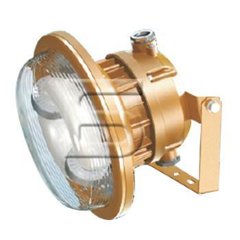 森本 FGV1146-QL50防爆电磁感应灯 50W,白光